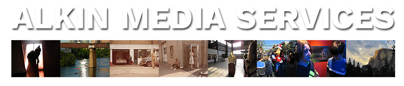 Alkin Media Services